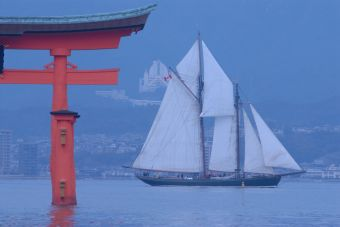Pacific Grace in Japan By Antony Dickinson